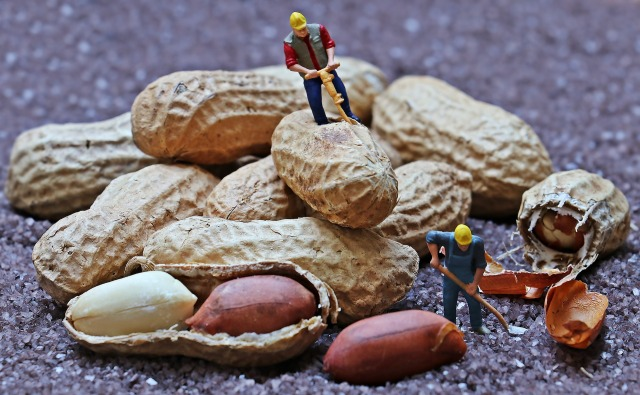 WorkingForPeanuts